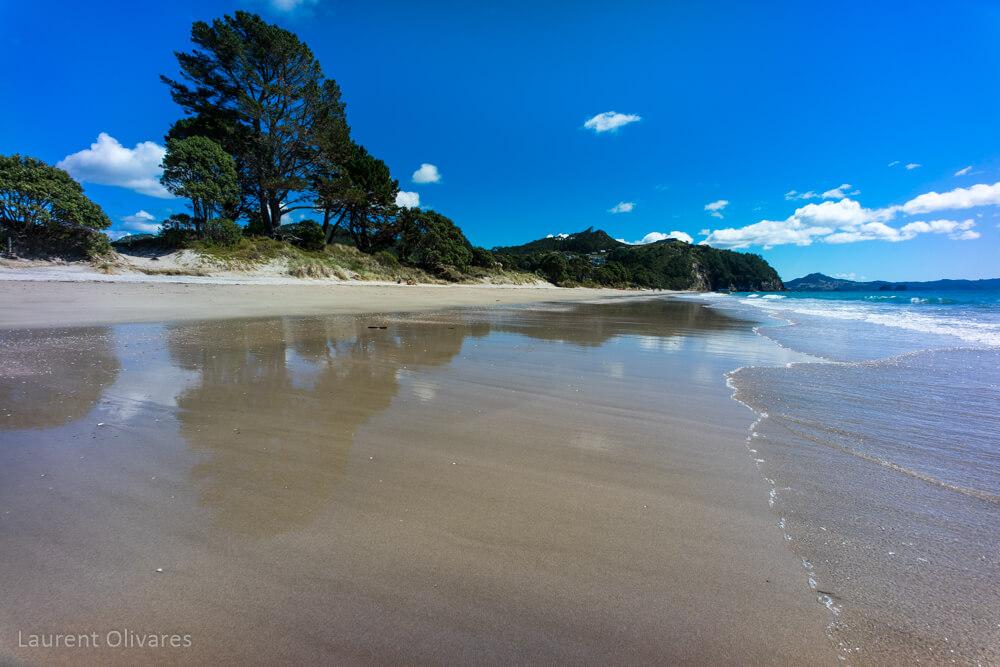 Reflet sur le sable de Hahei