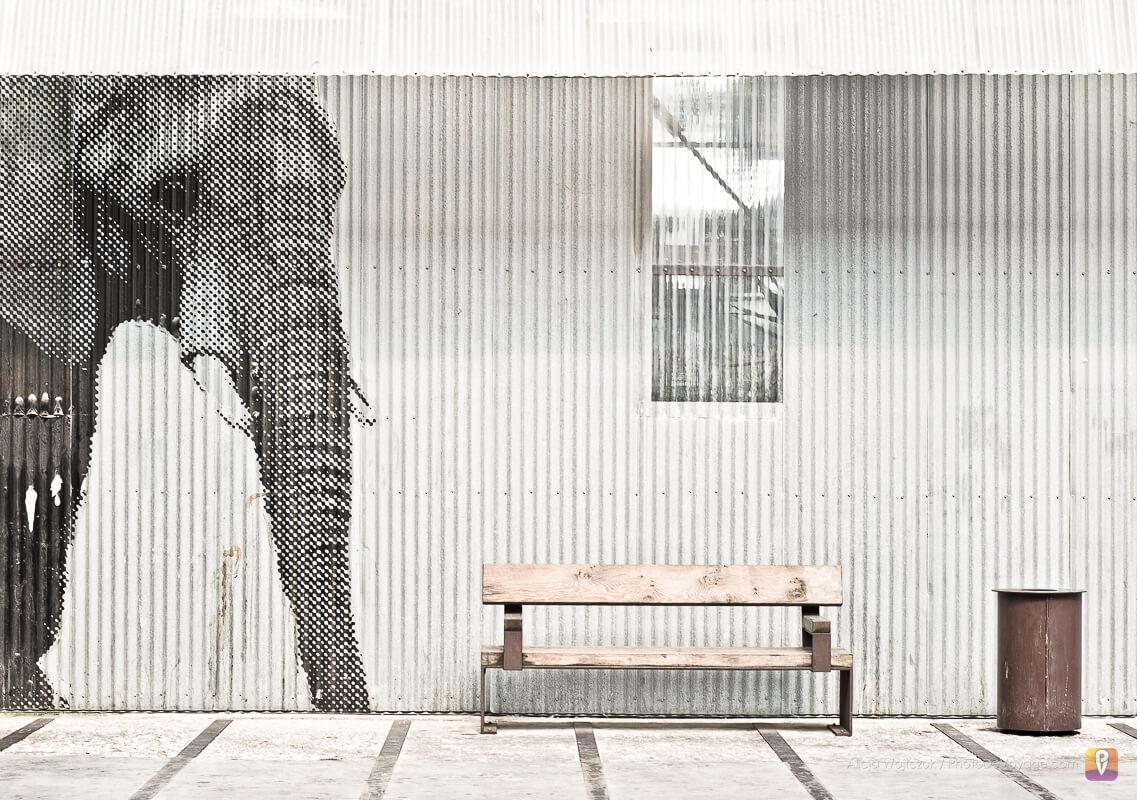 Rysunek słonia w hangarze Royal De Luxe